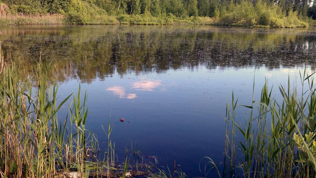 http://stdrf.com/4kat/lake-1-3.jpg